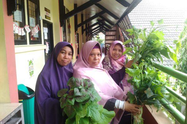 SDIT Panen Hasil Kebun Tanaman Hidroponik Adiwiyata