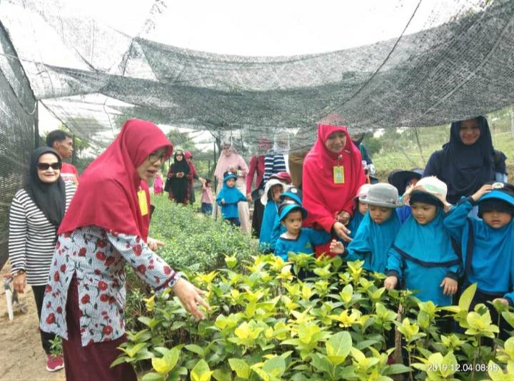 Para Siswa TKIT/KBIT mengenal berbagai macam tanaman di PUPR Palas